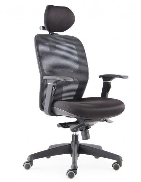 """Asís """"Novedad 2020"""""""